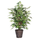 Vickerman TXX1840 4' Japanese Maple Extra Full