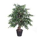 Vickerman TXX4240 4' Mini Ficus Extra Full