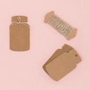 Weddingstar 4413 Kraft Paper Mason Jar Favor Tag with Twine
