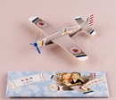 Weddingstar 8671 Mini Airplane Glider Favors