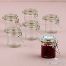 Weddingstar 9188 Small Glass Jar With Wire Snap Lid Favor Container (12)