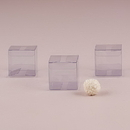 Weddingstar 9348 Transparent Acetate Favor Box (10)
