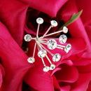 Elegance by Carbonneau BQ-Glow Crystal Glow Bouquet Spray Crystals *Very Popular* BQ-Glow