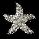 Elegance by Carbonneau Brooch-3168-A-Clear Antique Silver Starfish CZ Beach Bridal Brooch 3168