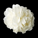 Elegance by Carbonneau Clip-411 Ivory Gardenia Cluster Bridal Hair Flower on Clip 411 with Brooch Pin