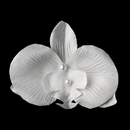 Elegance by Carbonneau Clip-437-White White Orchid Floral Bridal Hair Clip or Clip Brooch 437