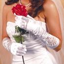 Elegance by Carbonneau GL-1017E Formal or Bridal Gloves Style GL1017E