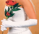 Elegance by Carbonneau GL-2224-12A Formal or Bridal Gloves Style GL2224-12A