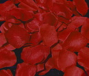 Elegance by Carbonneau Rose-Petals-Red Red Rose Petals (100 Count) #5
