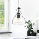Warehouse of Tiffany HM022/1 Nefelt Matte Black 1-Light Decanter Seeded Glass Pendant