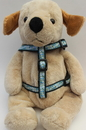 Diva Dog DD-FDAISHARN Daisy Collection - Step In Harnesses All Metal Buckles