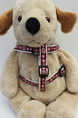 Diva Dog DD-FGPTYHARN Garden Party Collection - Step In Harnesses All Metal Buckles