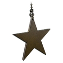 Westinghouse Pull Chain with Star (Cozumel Gold)