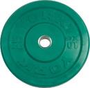 York Barbell 28091 USA 10 KG Green Rubber Training Bumper Plate