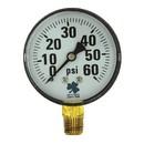 Zenport DPG60 63mm Dry Pressure Gauges, 0 - 60 psi